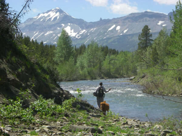 Beautiful Montana fly fishing